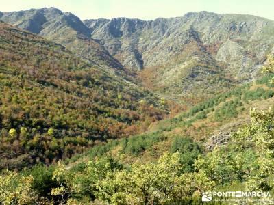 Parque Natural de Tejera Negra - Cantalojas - Guadalajara - Sierra de Ayllón;calidad en el senderis